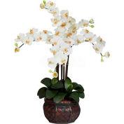 Nearly Natural Phalaenopsis with Decorative Vase Silk Flower Arrangement, Cream