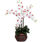 Nearly Natural Phalaenopsis with Decorative Vase Silk Flower Arrangement, White