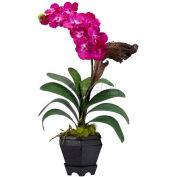 Nearly Natural Vanda with Black Hexagon Vase Silk Arrangement, Beauty