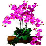 Nearly Natural Phalaenopsis Stem (Set of 12), Beauty