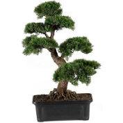 Nearly Natural 24'' Cedar Bonsai Silk Plant