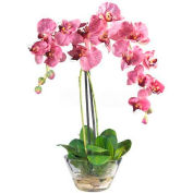Nearly Natural Phalaenopsis with Glass Vase Silk Flower Arrangement, Purple