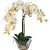 Nearly Natural Phalaenopsis with Glass Vase Silk Flower Arrangement, White