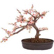 Nearly Natural Cherry Blossom Bonsai Silk Tree
