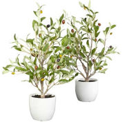 Nearly Natural 18'' Olive Silk Tree with Vase (Set of 2)