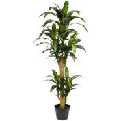 Nearly Natural 5' Yucca Silk Plant