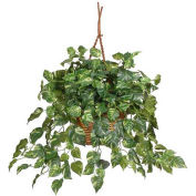 Nearly Natural Pothos Hanging Basket Silk Plant