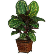 Nearly Natural Maranta with Basket Silk Plant