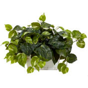 Nearly Natural Pothos with White Wash Planter Silk Plant