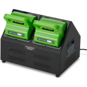 Newcastle Systems PowerSwap Nucleus PowerCharge Dual Station