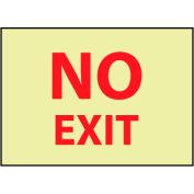 Glow Sign Vinyl - No Exit