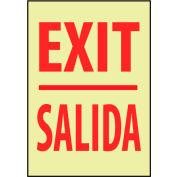 Glow Sign Rigid Plastic - Exit/Salida Bilingual
