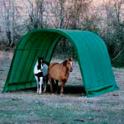 Equine Shelter 12' x 24' x 10'