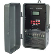 NSI DTS200B Multivolt 365 Day Signal Supercap 2 Channel 20A SPDT