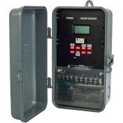 NSI TORK® DZS100BP Multivolt 365 Day Astro Supercap 1 Ch. 20A DPDT W/Portable Mem. Module
