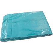Novatek™ Replacement 3 Gallon Collection Bags - VAC3312