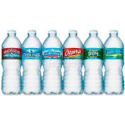 Nestle Premium Spring Bottled Water, 16.91 Oz, 24/Carton