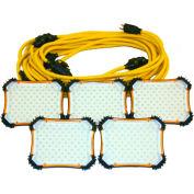 CEP 97135, 50' 18/2 SJTW LED String Light, 5 lights