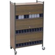 """Omnimed® Omnicart Cab 30 Cap W/Locking Panel, Woodgrain, 34-1/2""""W x 17""""D x 55-1/8""""H"""