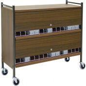 Omnimed® Large Vertical Cabinet Chart Rack with Locking Panel, 45 Binder Capacity, Woodgrain