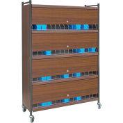 Omnimed® Large Vertical Cabinet Chart Rack with Locking Panel, 60 Binder Capacity, Woodgrain