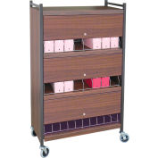 Omnimed® Standard Vertical Cabinet Chart Rack with Locking Panel, 24 Binder Capacity, Beige