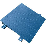 Optima 750 Series 4' x 4 Ramp for 4' x 4' Floor Digital Scale -Blue