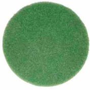 """Oreck® 12"""" Cleaning Pad, Green - 437.056"""