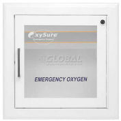 OxySure® Surface Mounted Wall Box