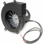 Fasco Centrifugal Blower, A082, 115 Volts 2800 RPM