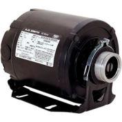 Century CB2024V1, Carbonator Pump Motor 1725 RPM 115 Volts 1/4 HP