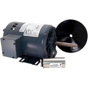 Century FR1076, Outdoor Ball Fan Motor 208-230/460 Volts 1075 RPM 3/4 HP