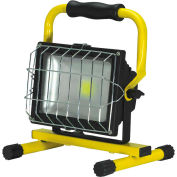 ProBuilt® 311030 30W LED Flood Light