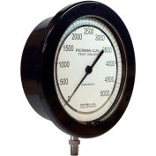 """Perma-Cal 100FTM04A21, 6"""" Dial, 0-100 psi, 1/4"""" NPT, Bottom Mount, SS Connection, BLK Front Flange"""