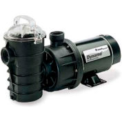 "Pentair 1 HP, 115V 2 Speed Dynamo Pump Above Ground No Cord W/Switch 1.5"" Fpt"