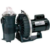 "Pentair 1 HP, 115/230V Challenger Pump High Flow Standard Motor Full Rated 2"" Fpt"