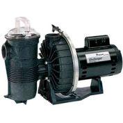 "Pentair 2 HP, 230V Challenger Pump High Flow Standard Motor Full Rated 2"" Fpt"