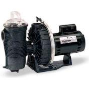 "Pentair 2 HP, 230V Challenger Pump High Flow Standard Motor Up Rated 2"" Fpt"
