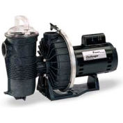 Pentair 1.5 HP, 115/230V Challenger Pump High Pressure Standard Motor Full Rated