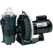 "Pentair .75 HP, 208/230/460V Challenger Pump High Pressure 3 Phase Full Rated 2"" Fpt"