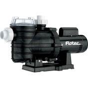 Flotec  Two-Speed In-Ground Pool Pump, 1 HP