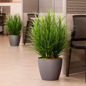 """OfficeScapesDirect 34"""" Grass Silk Plant"""