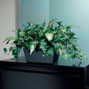 OfficeScapesDirect Mixed Ivy & Silver Queen Filetop Silk Plant