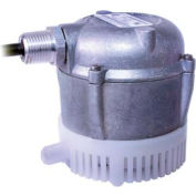 Little Giant 501036 Submersible Parts Washer Pump - 230V- 205GPH at 1'