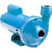 Little Giant 558242 CP-100-C Centrifugal Pump Cast Iron & End Suction - 115/230V - 60 GPM - 1 HP