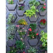 """Palram, PlantScape Hex Vertical Garden, HG2106, 22.5""""L x 20.5""""W, Grey"""