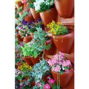 "Palram, PlantScape Terra Vertical Garden, HG2100, 22.5""L x 20.5""W, Terra"