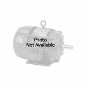US Motors OEM Replacement, 1/5 HP, 1-Phase, 970 RPM Motor, 1680