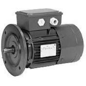 US Motors Brake, 1 HP, 3-Phase, 1720 RPM Motor, BR1S2A3