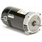 Pool & Spa, C and J, Switch Design, 1 HP, 1-Phase, 3450 RPM, EUST1102